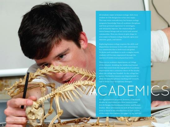 Porcupine Design College of the Atlantic Admission Guidebook Graphics