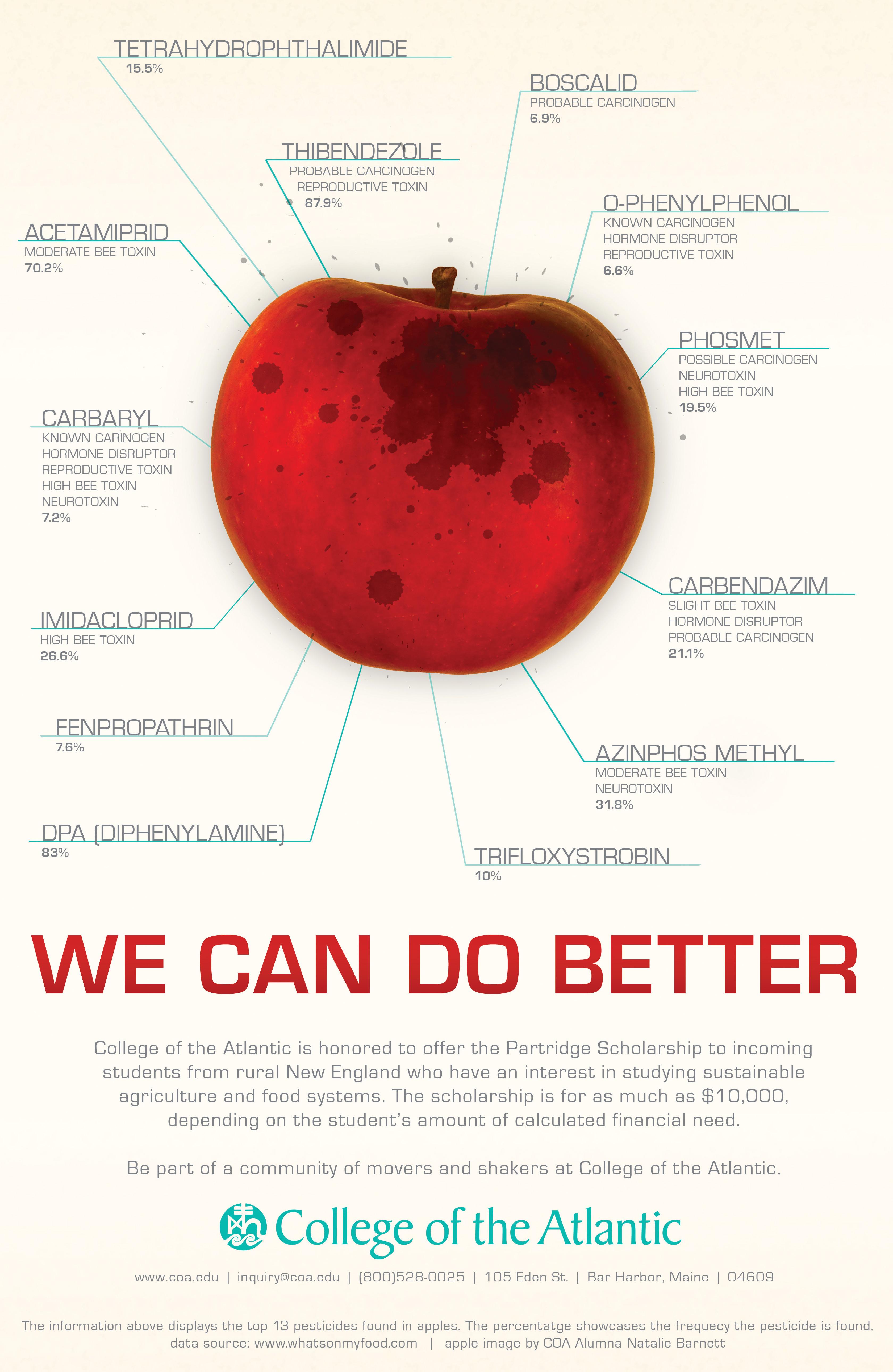 Farm Scholarship Poster | Porcupine Design | Porcupine Design